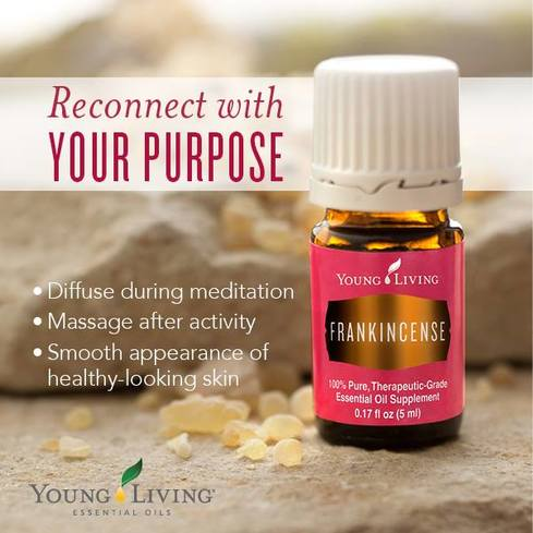 Young Living Frankincense Oil is a great support for the Integumentary, Nervous, Reproductive, Endocrine, Respiratory, and Immune Systems.  Find out some ways to use Frankincense and take The Oily Plunge on www.sherilbrasher.info & order some today at http://bit.ly/1rL8jOO. #youngliving #essential #oils