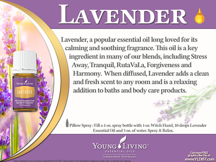 Young Living Lavender Oil is a great support for the Cardiovascular, Integumentary, Nervous, Muscular, Respiratory and Skeletal Systems.  Find out some ways to use Lavender and take The Oily Plunge on www.sherilbrasher.info & order some today at http://bit.ly/1rL8jOO. #youngliving #essential #oils