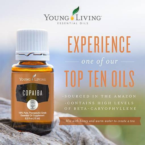 Young Living Copaiba Oil is a great support for the Muscular System, Urinary System, Integumentary System and the Skeletal System.  Find out some ways to use Copaiba and take The Oily Plunge on www.sherilbrasher.info & order some today at http://bit.ly/1rL8jOO. #youngliving #essential #oils