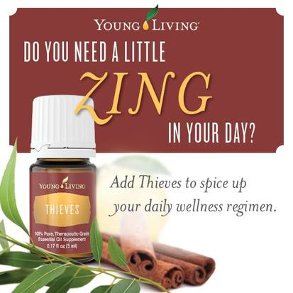 Young Living Thieves Oil Blend is a great support for the Cardiovascular, Digestive, Endocrine, Immune, Respiratory and Urinary Systems.  Find out some ways to use Thieves and take The Oily Plunge on www.sherilbrasher.info & order some today at http://bit.ly/1rL8jOO. #youngliving #essential #oils